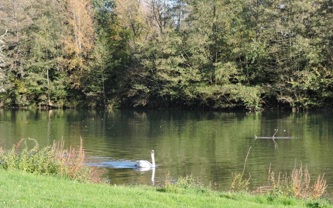 Marcilly sur Seine